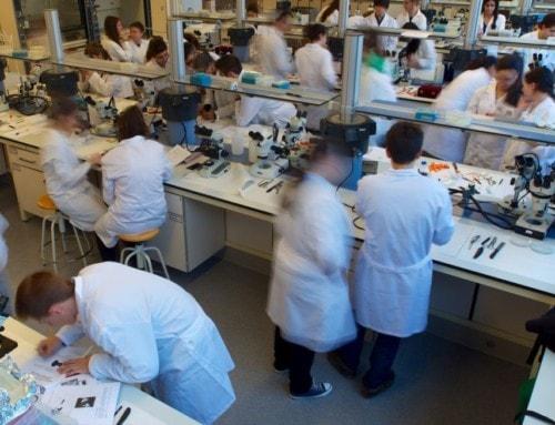 """La URV, entre les 500 primeres millors universitats del món segons el rànquing """"Times Higher Education"""""""